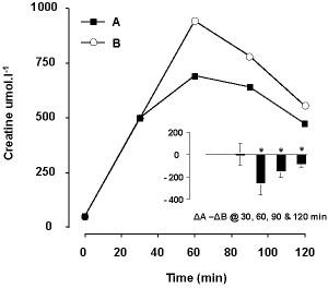 Creatine plasma concentrations