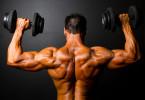 Muscular V-Shaped Torso