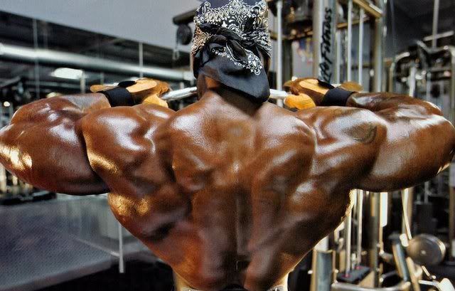L-Lysine and L-Arginine may promote growth hormone release - Bac Benwhite huge back