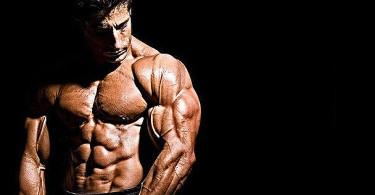 Shredded muscular body