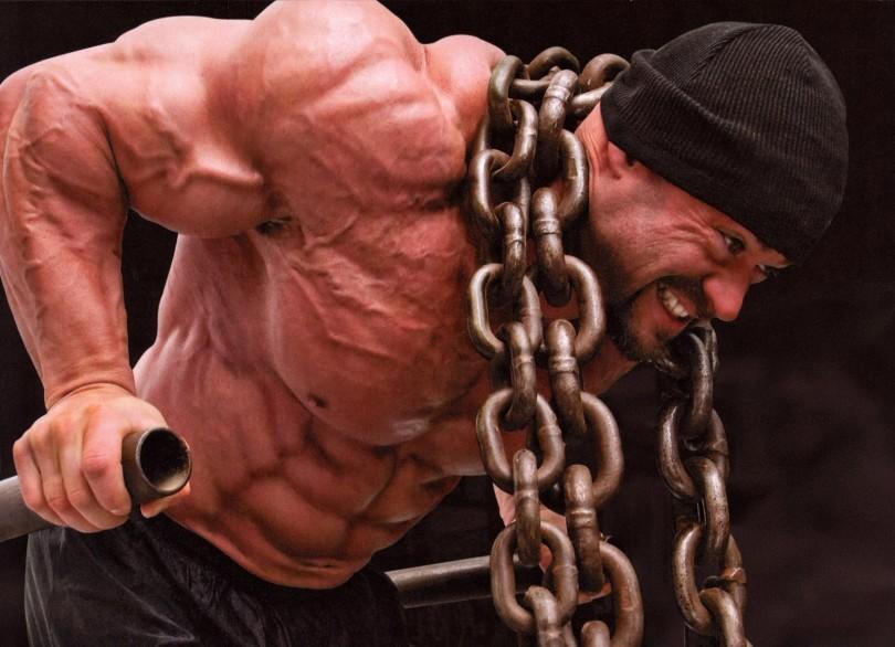 hard muscles bodybuilders