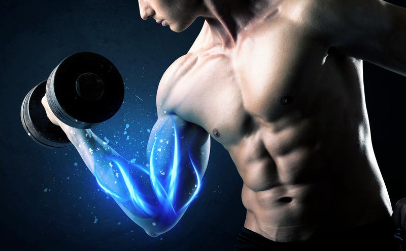 Anabolic Window Muscle
