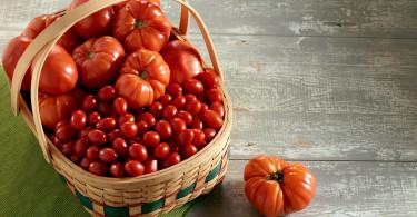 tomato lycopene