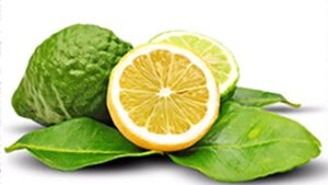 citrus bergamot benefits